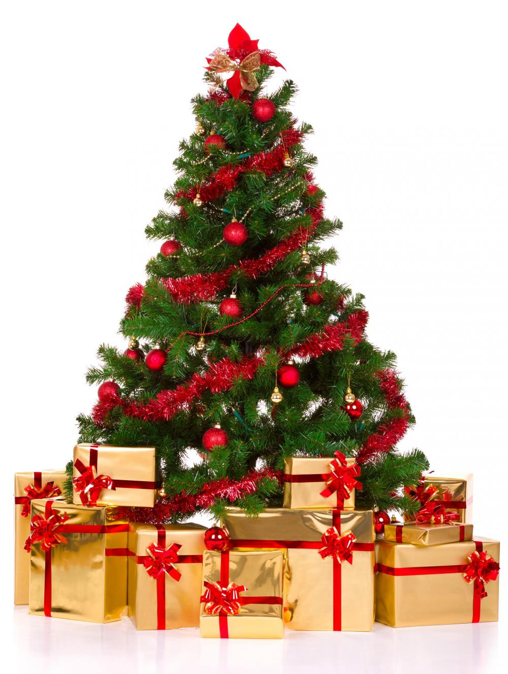 an example of a christmas tree - How Long Do Real Christmas Trees Last