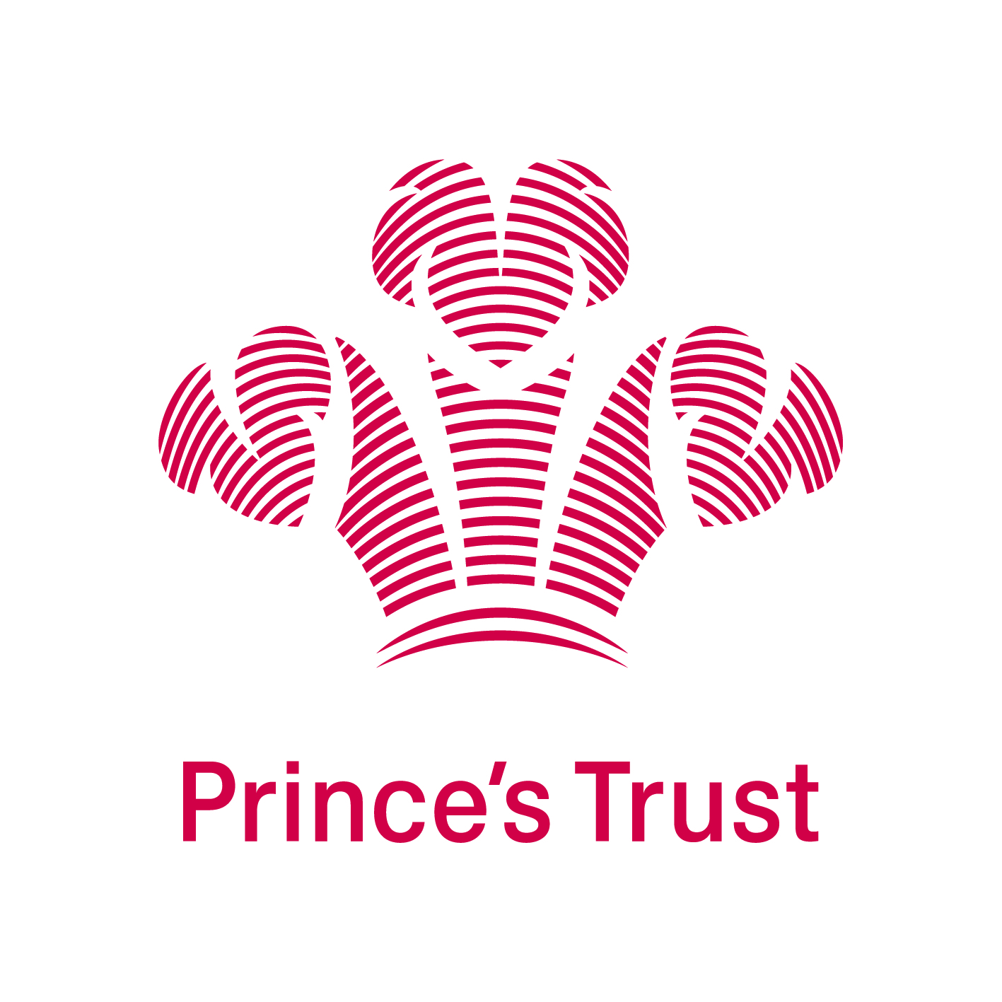 Princes Trust Team Program