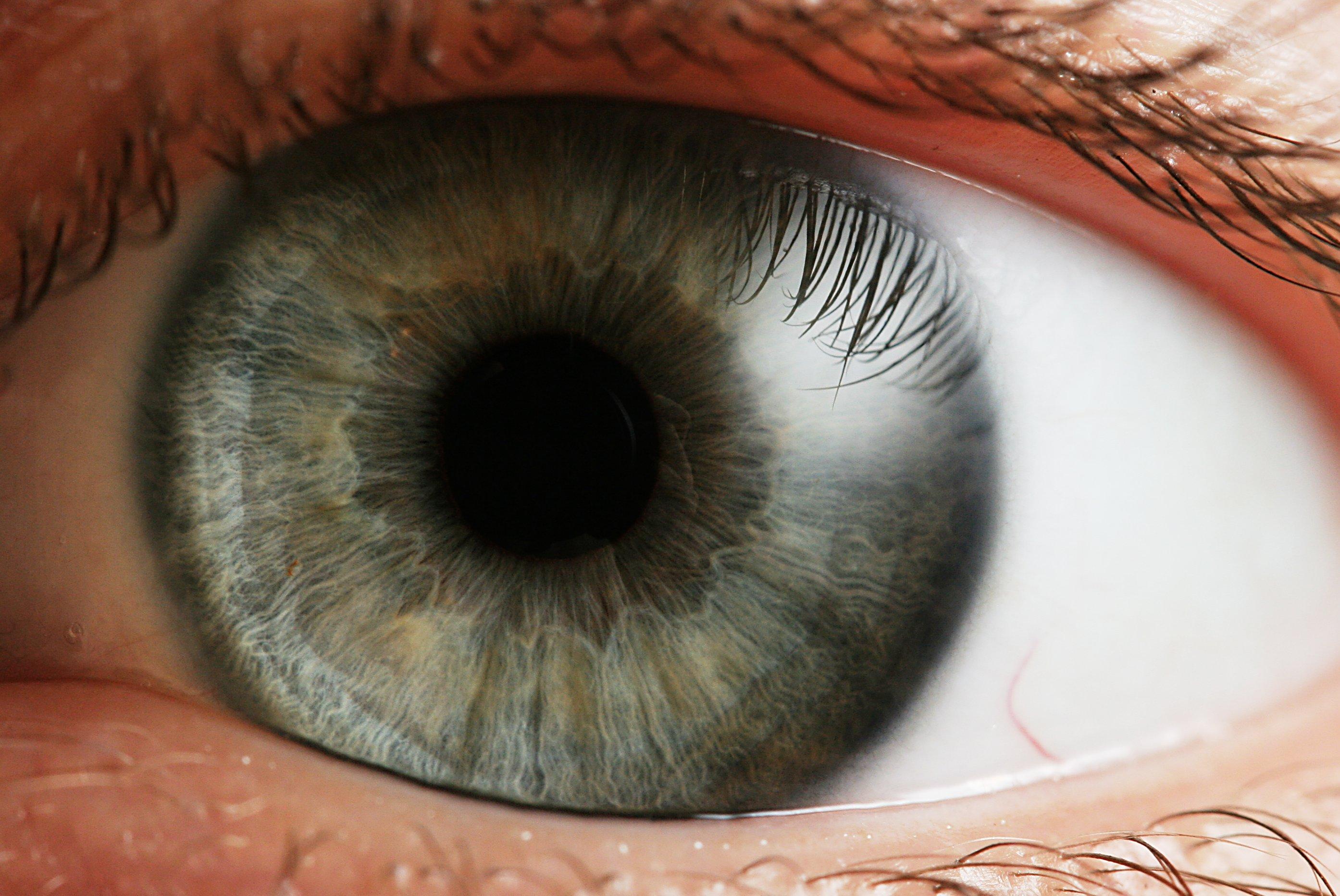 Eye discovery