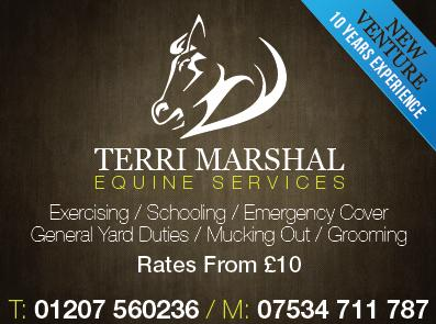 TM Equine Services