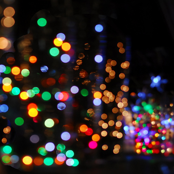 Dust Town Dogs Christmas Lights