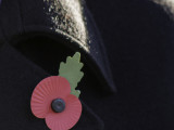 Remembrance Sunday Celebration 10