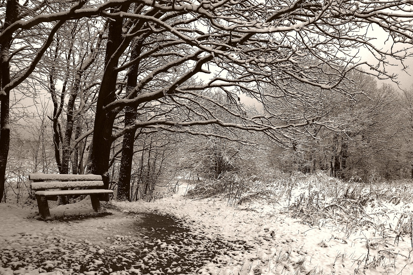 winter of 62