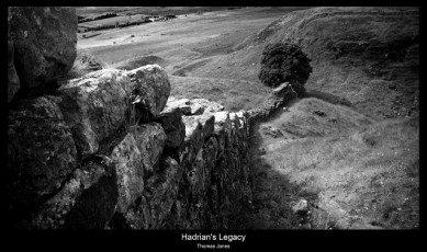 hadrian's legacy sycamore gap
