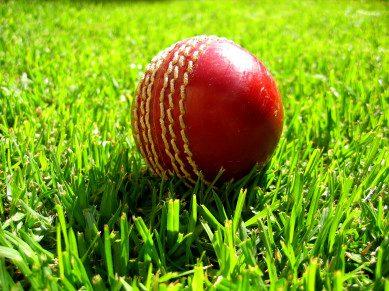 Cricket at the spa