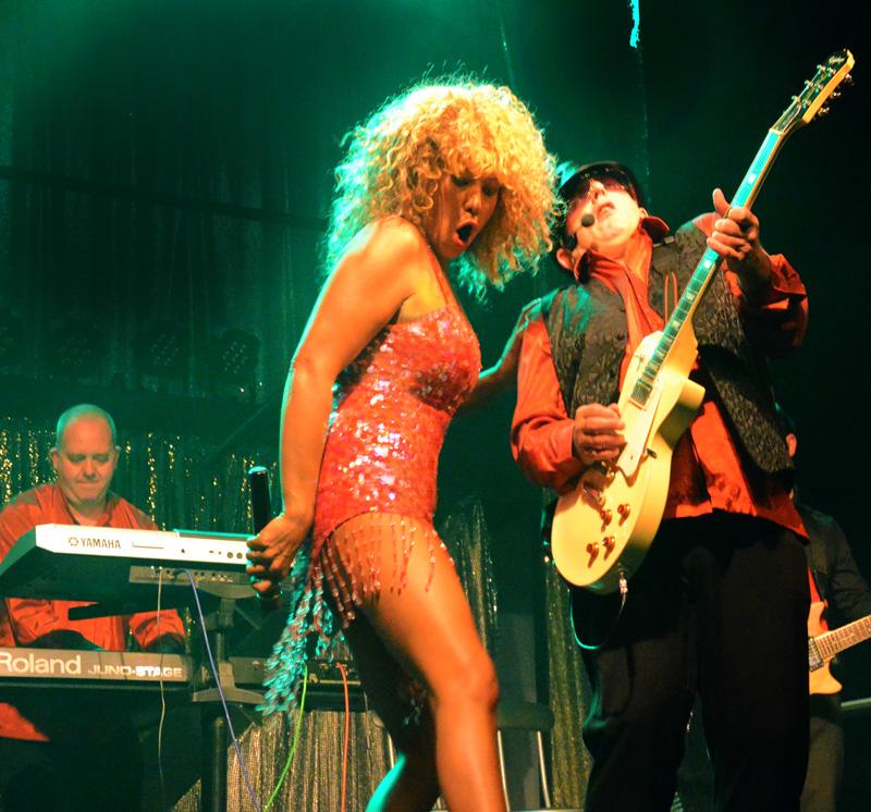 Tina Turner Totally Tina