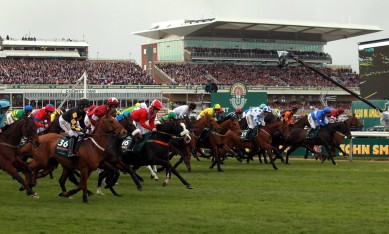 Grand National Tips for 2014