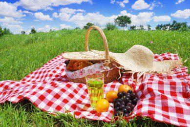 picnic Consett