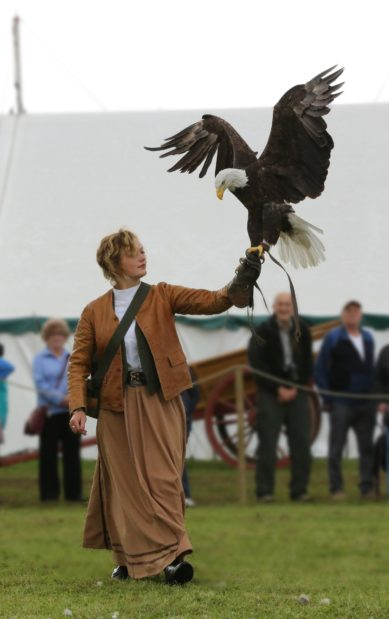 The amazing birds of prey that will be on display during the show