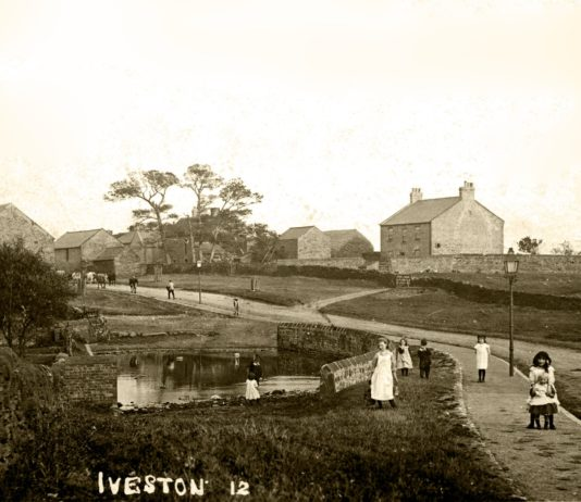 Iveston