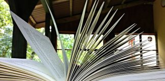 Reading by Jurek D - Creative Commons Summer Reading