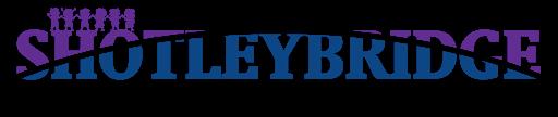 Shotley Bridge Nursery School Logo Design