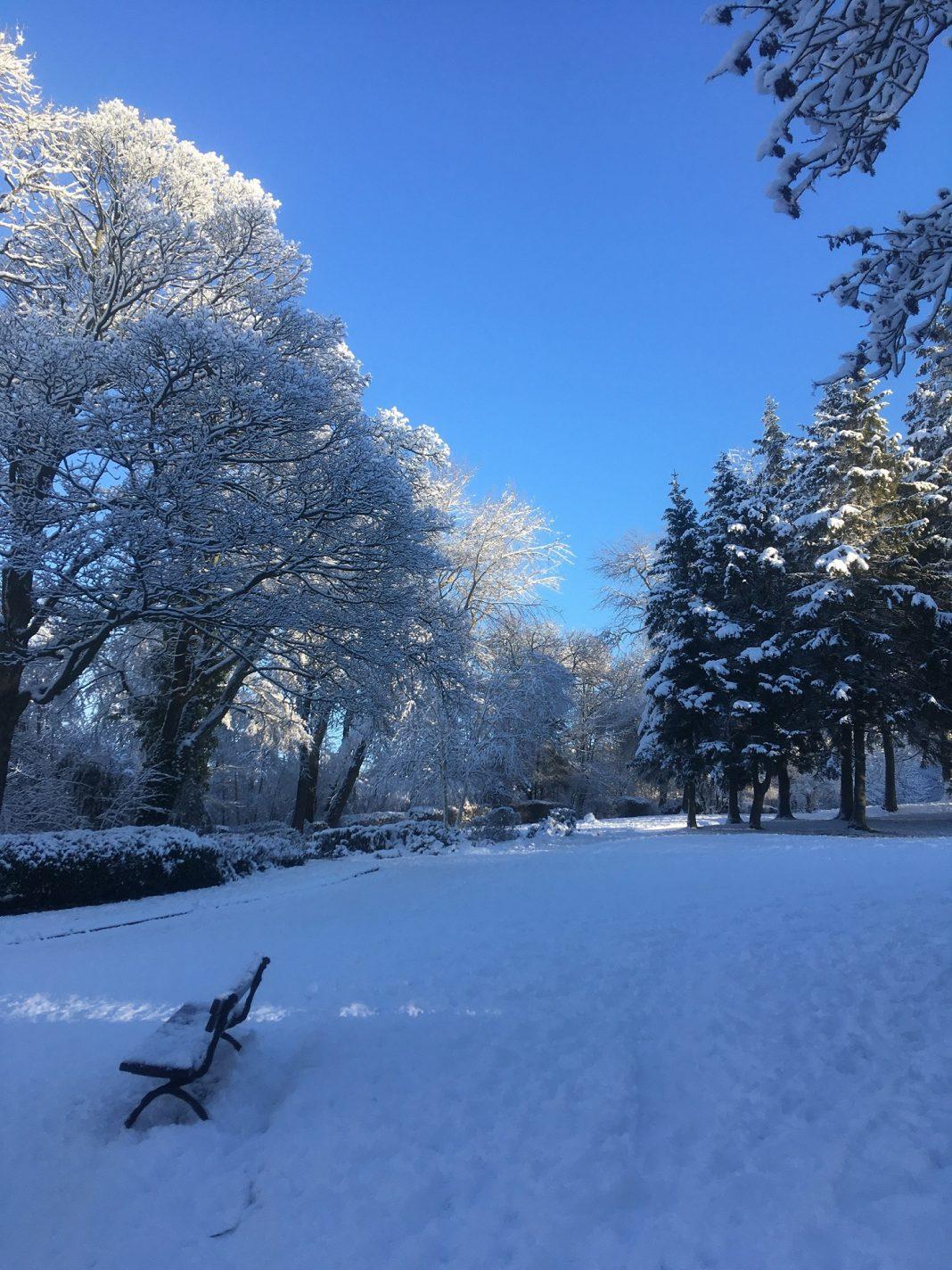 Consett and Blackhill Park - Photo By Audrey Rogan