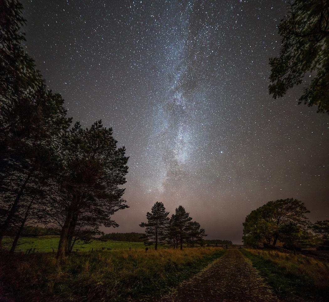 Derwent walk stars